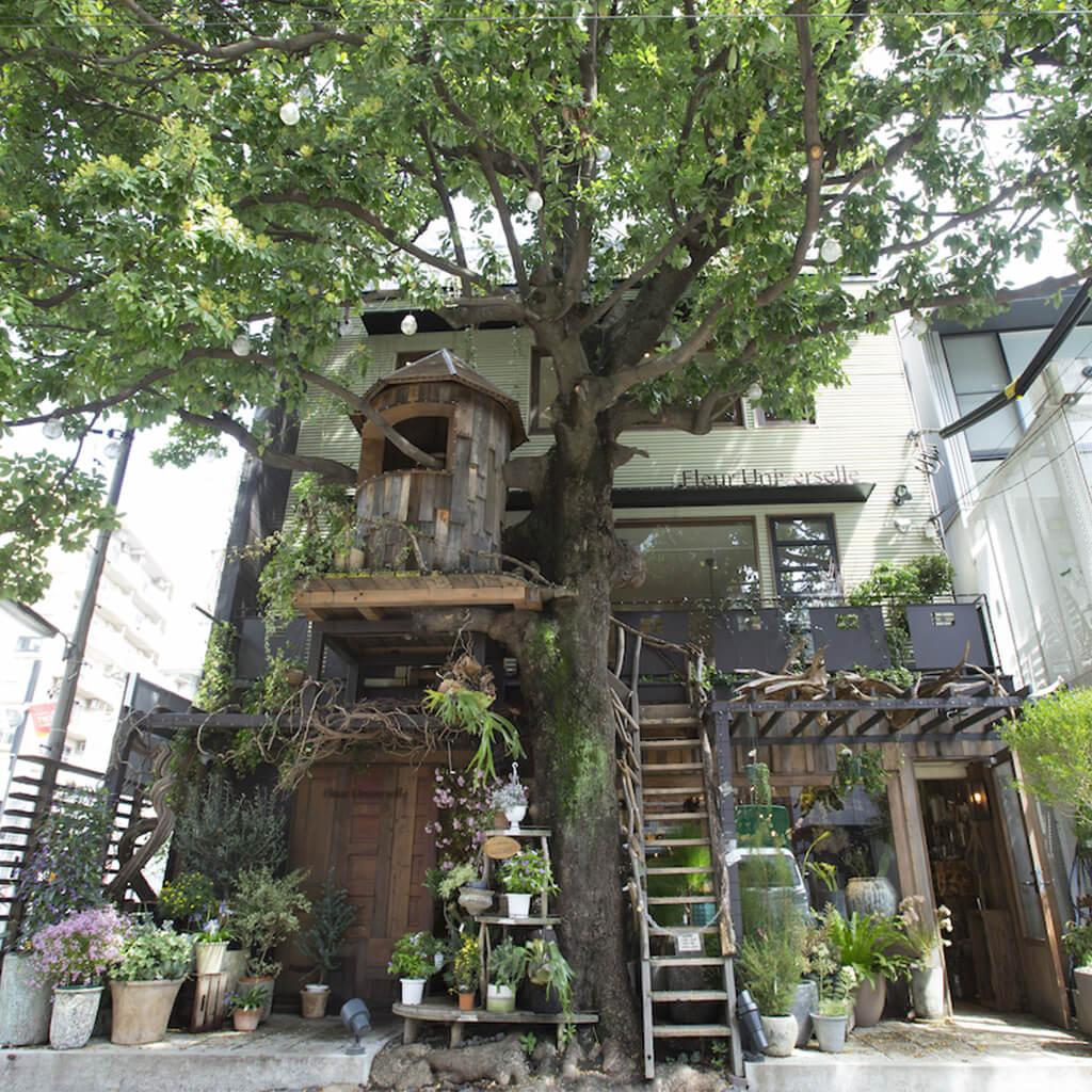 大人になって良さがわかる街。洗練された街・広尾の駅近カフェ