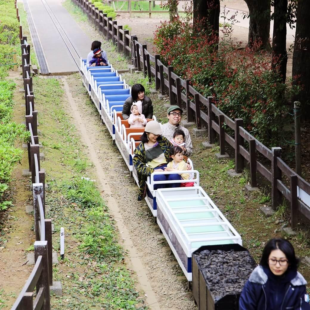 都会と自然がミックスされた、東京らしさが魅力の世田谷公園