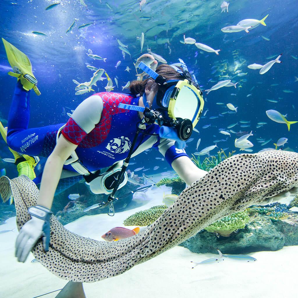 東京都内の水族館と動物園。買い物などプラスアルファを楽しむならこの2つ