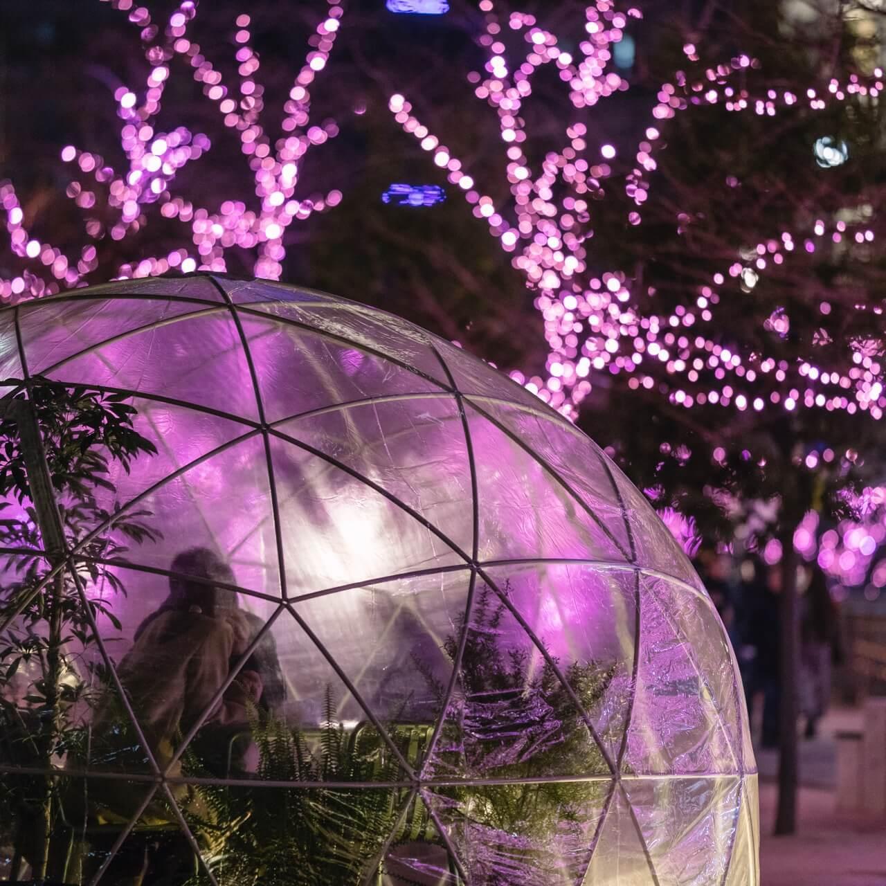 【11/29~12/1】今週末どこへ行く? 東京のおすすめおでかけ5選