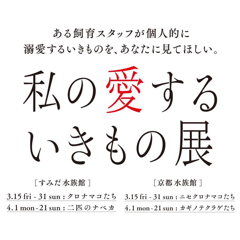 すみだ&京都水族館の合同企画。飼育員の偏愛に溢れた「私の愛するいきもの展」が開催中