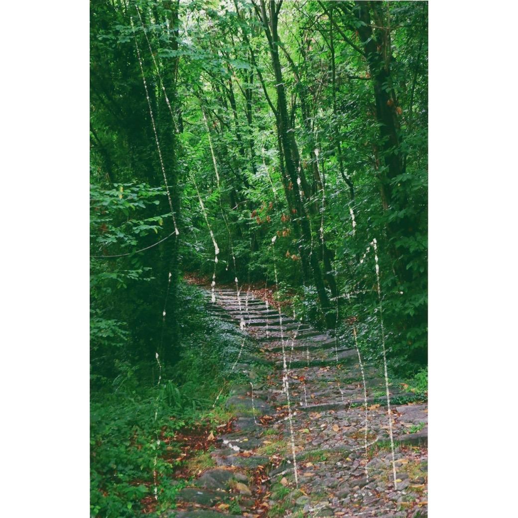 現代美術界の巨匠、ゲルハルト・リヒターの世界初公開作品が六本木で公開中