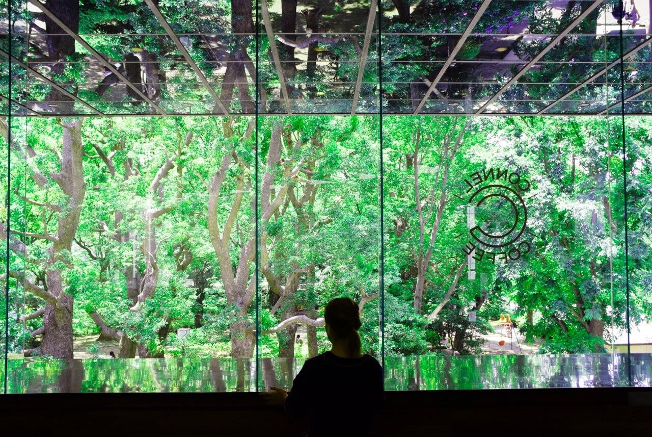 360°自然に包まれる浮遊感。設計とデザインの妙が生んだ「中なのに外」なカフェ