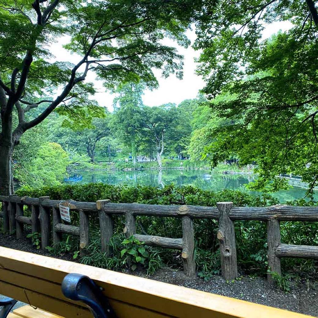 編集部が選んだ東京のベンチ。休日は公園の絶景を愉しもう。